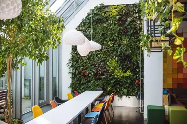 布达佩斯天巡办公空间绿植墙图片